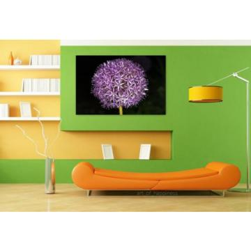 Stunning Poster Wall Art Decor Flower Blossom Bloom Garlic Macro 36x24 Inches