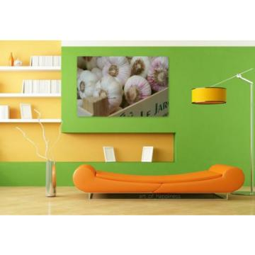 Stunning Poster Wall Art Decor Garlic Tuber Herb Medicinal Plant 36x24 Inches