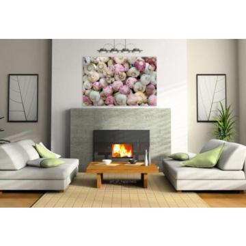 Stunning Poster Wall Art Decor Garlic Fresh Herb Farmer S Market 36x24 Inches