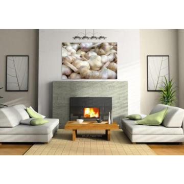 Stunning Poster Wall Art Decor Garlic Aromatic Spice Food Frisch 36x24 Inches