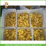 Buy Fresh Young Ginger 200g Up,10kg Plastic Carton
