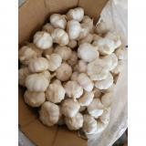 Pure White 5.0cm 100% Nature Made Garlic Sell to Latin America