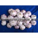 red color fresh garlic